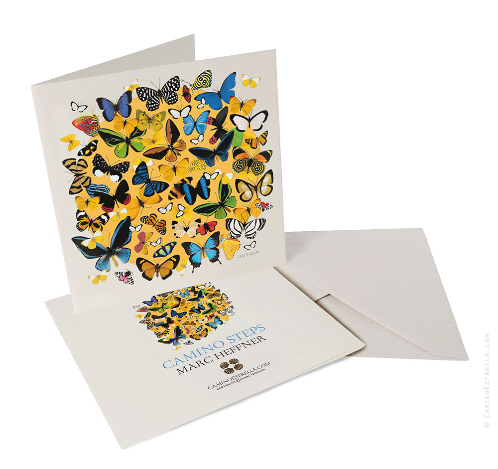 Card_Butterflies_flat_display